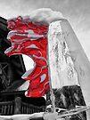 Canada Ice by Ryan Davison Crisp