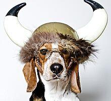 Viking Hound by Darren Boucher