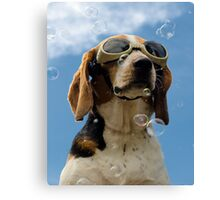 Hound amongst the bubbles Canvas Print