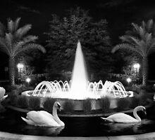 Swan Fountain by Peyton Duncan