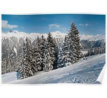 Austrian snowy trees Poster