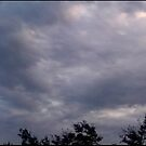 Storm Chase 2011 101 by dge357
