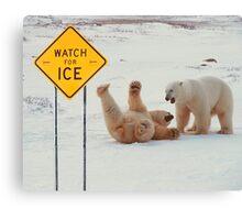 Polar Bears Slip On Ice Canvas Print