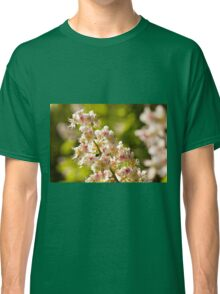 Aesculus flowers on green Classic T-Shirt