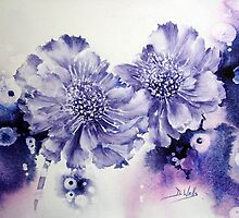 Wacky Scabious by Bev  Wells