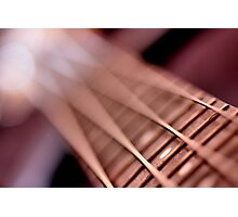 Vertical Bass-lines... Photographic Print