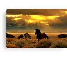 High Desert Gold Canvas Print