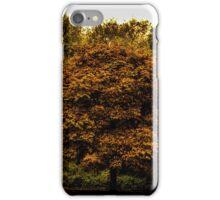 Golden Hour iPhone Case/Skin