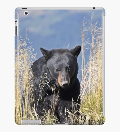 black bear iPad Case/Skin