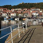 Scarborough Marina by EarlCVans