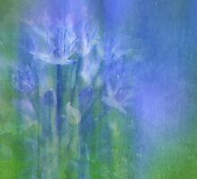 Blue Lagoon  by Elaine  Manley