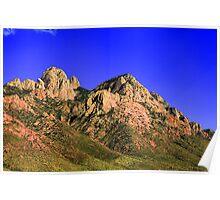 Organ Mountains Poster