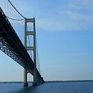 Bridge by Erika Snell
