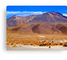Small Zorro - Large Volcano - Uyuni National Park Canvas Print