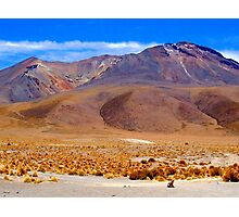 Small Zorro - Large Volcano - Uyuni National Park Photographic Print