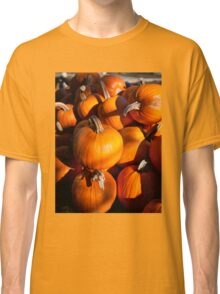 Pile of traditional pumpkins Classic T-Shirt