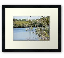 Natural - Port St Lucie River Framed Print
