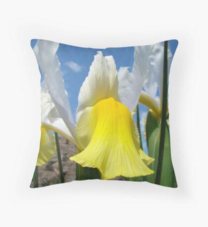 Floral Yellow White Irises Flowers art prints Baslee Troutman Throw Pillow