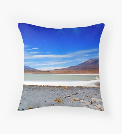 Volcanic Salar Lakes and Landscape Throw Pillow