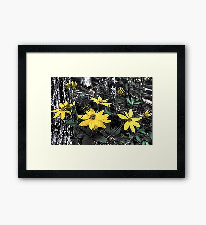 Just Yellow Framed Print