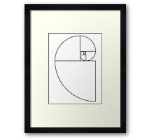Golden Ratio Spiral - Sections Outline Framed Print