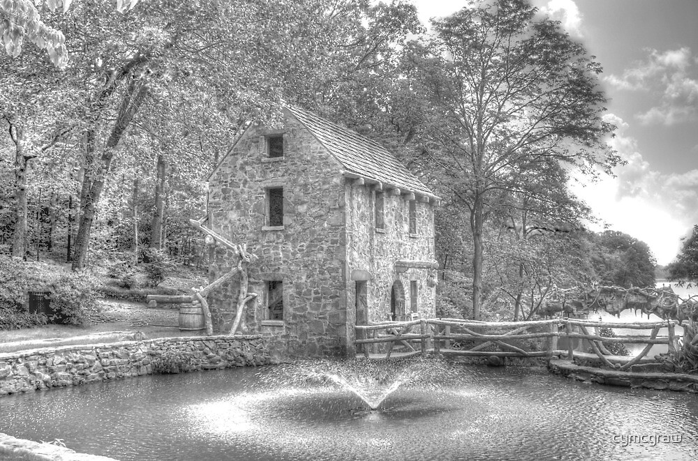 Old Mill  by Cynthia Broomfield