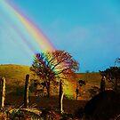 Rainbows dreams...... by foto1111
