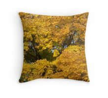 Michigan Autumn Gold Throw Pillow
