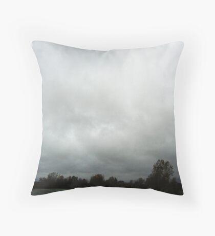 Merrit Township MI Creek Throw Pillow