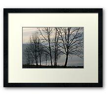 April Morning, Bush RIver 1 Framed Print