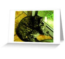Cousin Opal cares for little Bandit Bear Greeting Card