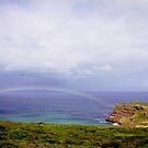 Rainbow at the Cape, South Africa by Alberto  DeJesus