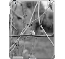 Its A Big World iPad Case/Skin