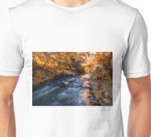 Autumn in Ihlara Valley Unisex T-Shirt
