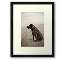 Waiting For His Master Framed Print