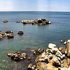 Tayrona View. by Fiinnn