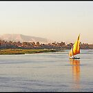 Nile Felucca by ten2eight