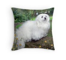 On a Tree Branch ! Throw Pillow