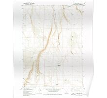 USGS Topo Map Oregon Flybee Lake 279909 1980 24000 Poster