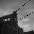 Barbed by Mark Theriault
