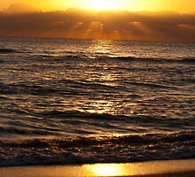 Golden Dawn In Miami by Paul Murray