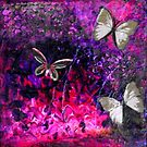 In My Garden by Suzanne  Carter
