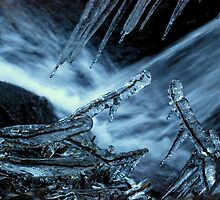 Icicles by Joyce Keevil