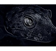 Reptile Smiles Photographic Print