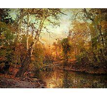 Autumnal Tones Photographic Print