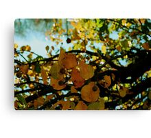 Abstract branches and leaves Canvas Print