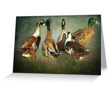 """""""See that guy with the green head ? ...He's quackers !"""" Greeting Card"""