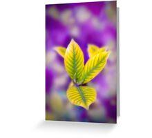 Fleur II Greeting Card
