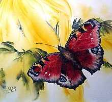 Butterfly- by Bev  Wells