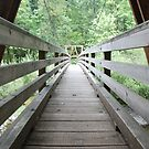 Wooden Foot Bridge by Payne24